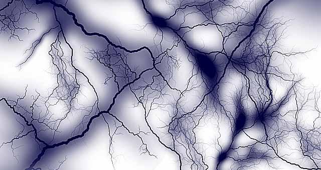 写真:脳機能の神経細胞