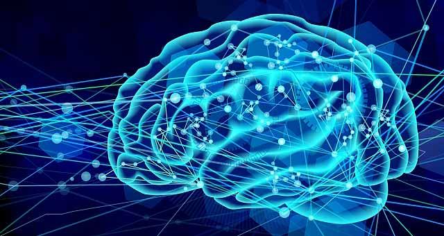図:脳の神経細胞
