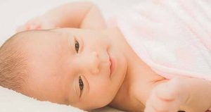 写真:赤ちゃんの脳