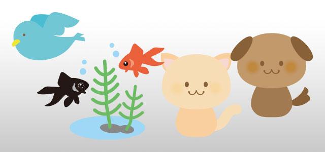 2番目はどれ?動物・植物編 問題0