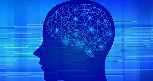 脳に運動が与える効果