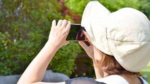 散歩と写真撮影でテレビ番組を見ながら脳のトレーニング
