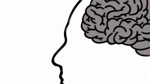 図:脳内物質