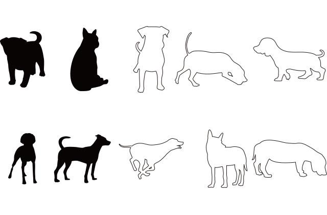 白い犬と黒い犬
