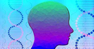 脳にとって質の良い睡眠
