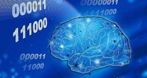 脳の大敵コルチゾル