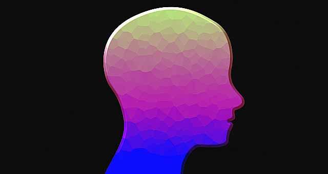脳の雑学&豆知識