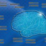 右脳と左脳の違いは理論的・感覚的な違いが