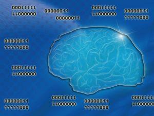 右脳と左脳